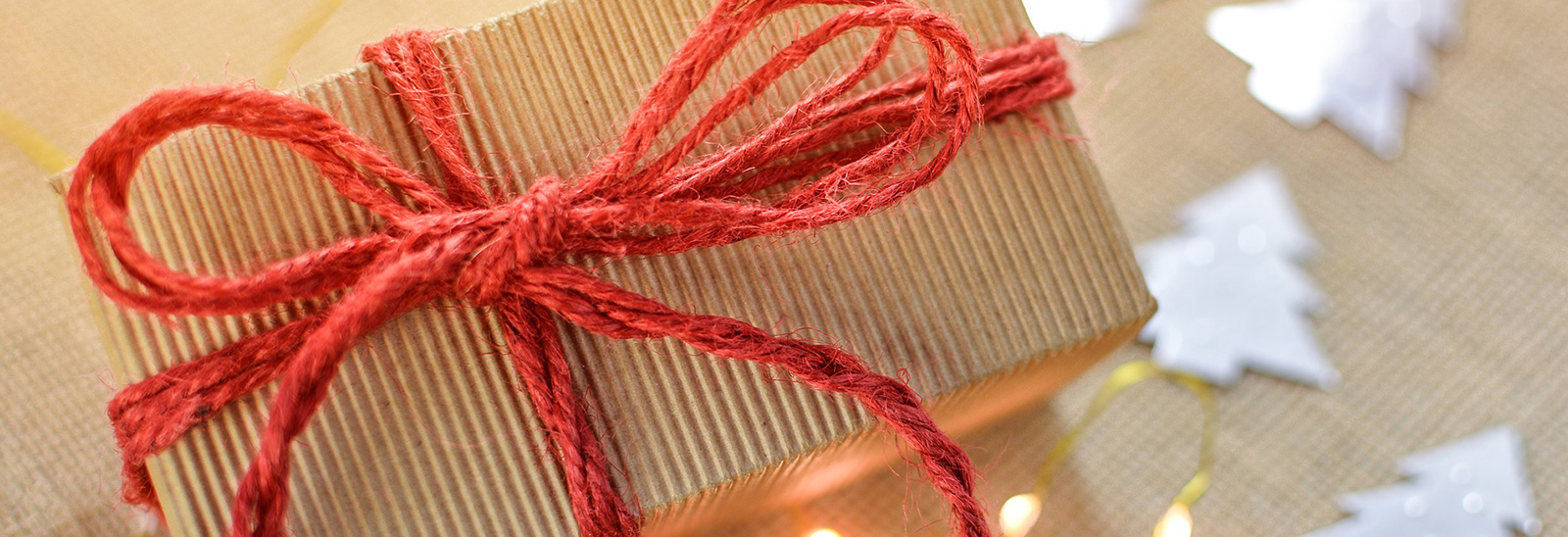 Sustainable Holiday Wrapping